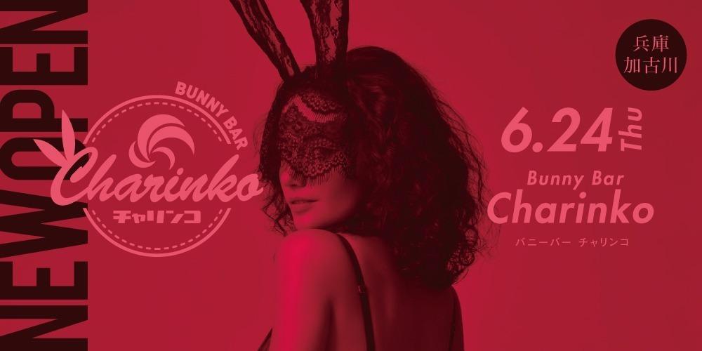 BUNNY BAR Charinko 6.24(木) OPEN!!:バニー バー
