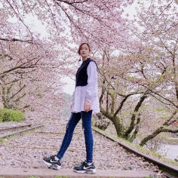 立華舞桜花