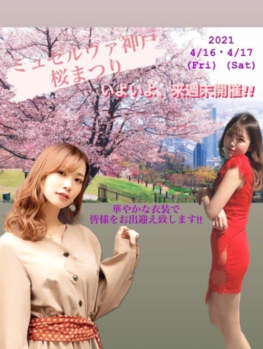 ‐ 桜まつり 開催 -